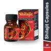 arogya shilajit capsule