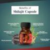 benefits of shilajit capsule