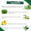arogya tea tree facewash ingredients